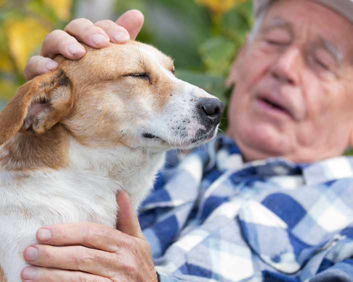 A Four Legged Antidote to Loneliness